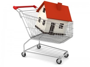 House in a Shopping Cart